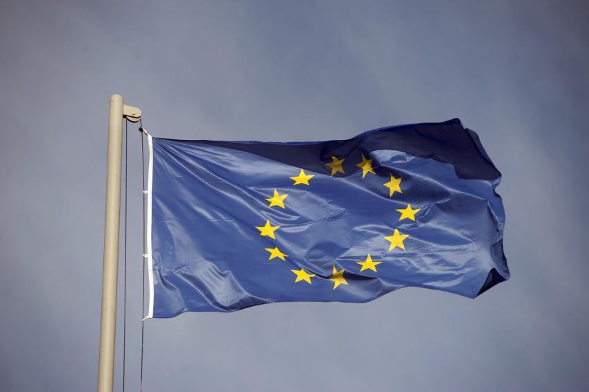 Политолог Александр Рар сообщил о перспективах развития конфликта в Евросоюзе