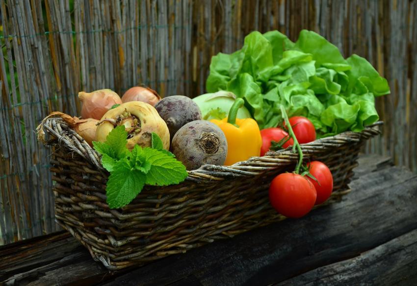 В Роскачестве рассказали, в каких случаях фрукты и овощи могут быть опасными